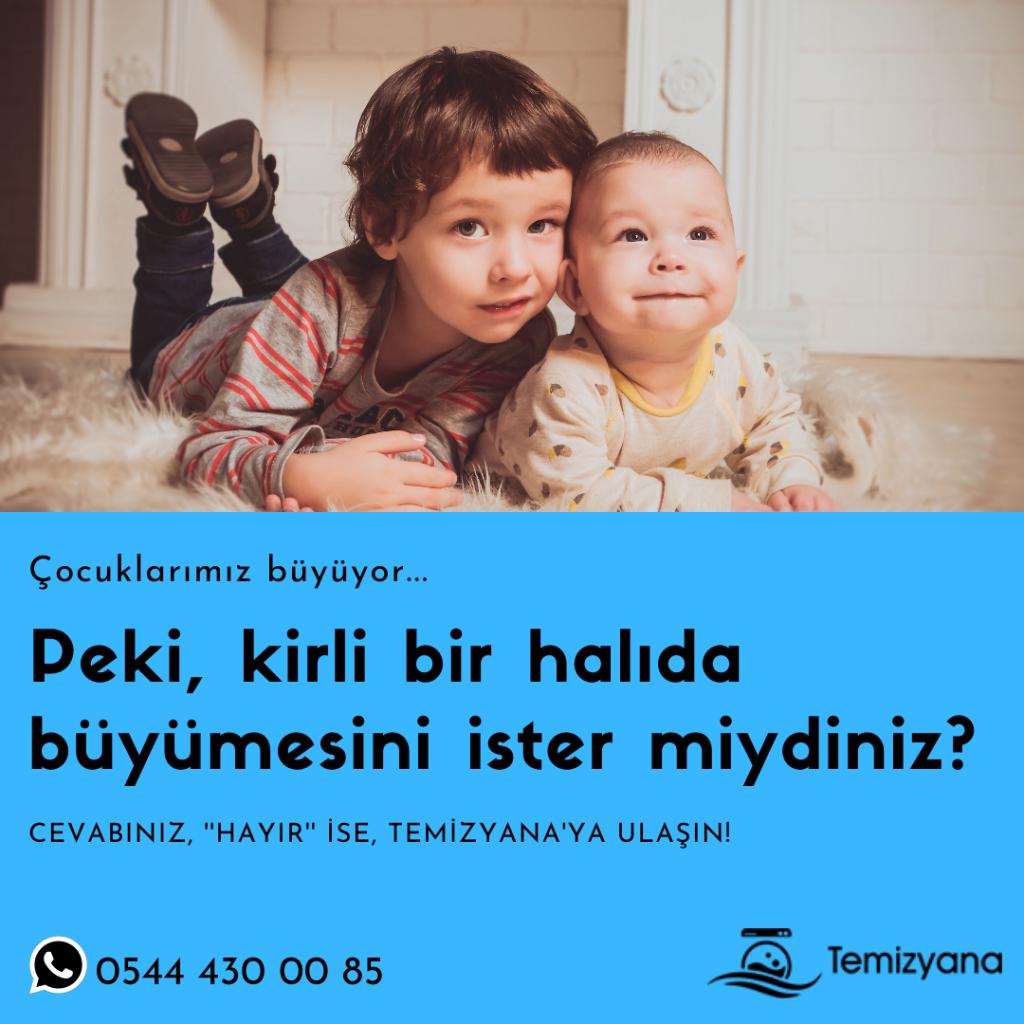 İstanbul Halı Yıkama